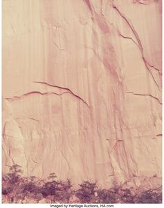 Cole Weston, 'Poplars, Ohura, New Zealand and Cow Canyon, Lake Powell, Utah (two photographs)', 1976