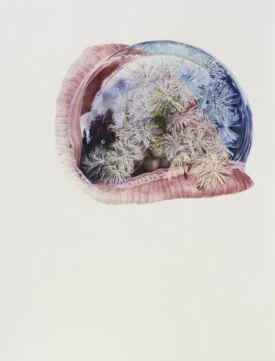Julia Randall, 'Dandelion', 2012