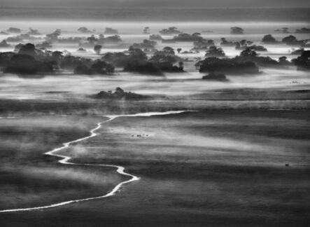 Sebastião Salgado, 'Kafue National Park, Zambia. [Fog banks at dawn]', 2010