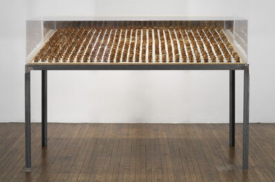 Alexander Brodsky, 'Untitled (tea bags)', 2008