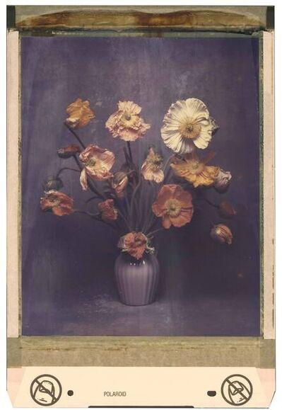 Jan C. Schlegel, 'Polaroid #015', 2021