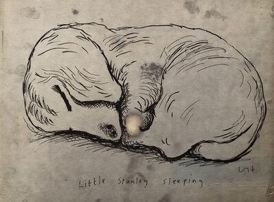 David Hockney, 'Stanley', 1989