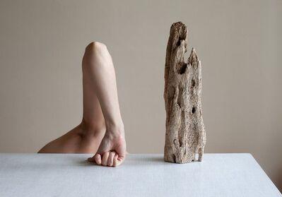 Birthe Piontek, 'Driftwood', 2020