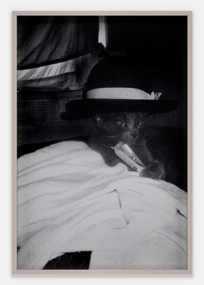 Dash Snow, 'Untitled (Cat in hat)', 2007