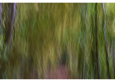Peter Daitch, 'Vermont 65', 2015