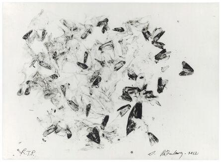 Susan Rothenberg, 'Moths and Peonies', 2012