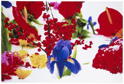 Marc Quinn, 'Untitled (Winter Garden Series; No. 8)', 2004