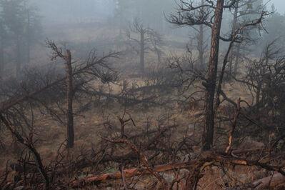 Chuck Forsman, 'Hard Season: Fire'
