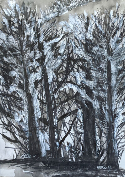 Edward Berkise, 'My Snow Squall', 2020