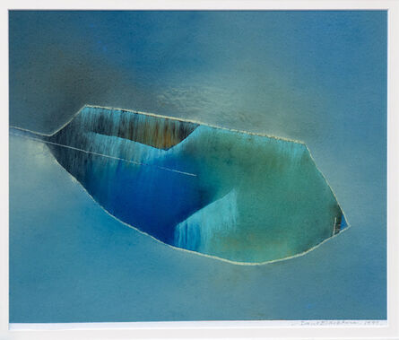 David Blackburn, 'Leaf Coast', 1999