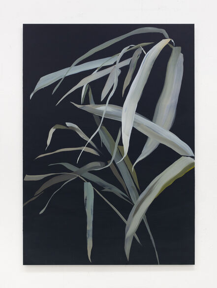 Marjolein Rothman, 'Leaves', 2019