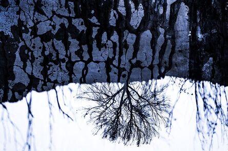 Jose Pesquero, 'Illusions of a Reflection'
