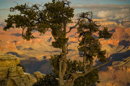 Orestes Gonzalez, 'Shroud - Grand Canyon', 2012