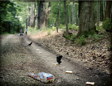Krista Steinke, 'They wondered where the path would lead them', 2006