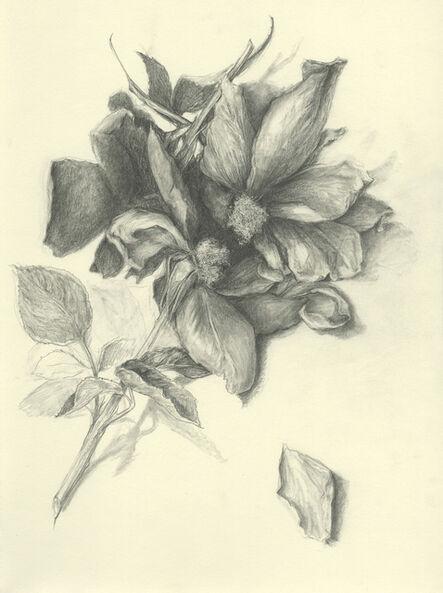 Amanda Besl, 'Installations 5: War of the Roses', 2015