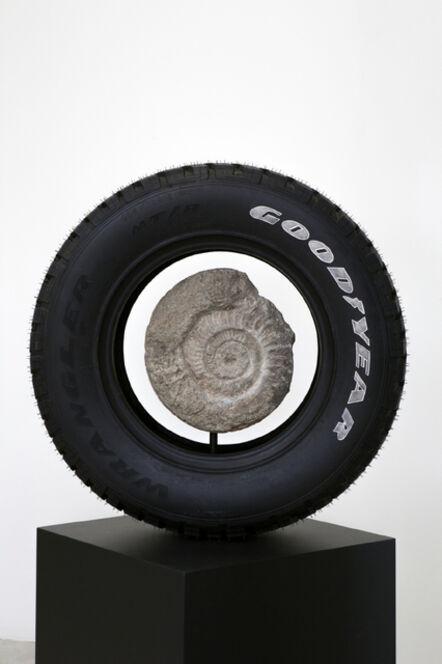 Théo Mercier, 'Memento Mori (Ammonite)', 2016