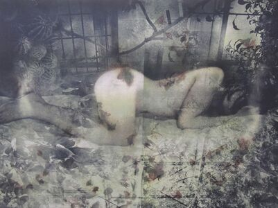 Misako Kobayashi, 'Inviolate Territory', 2010