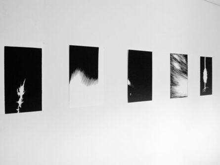MARTÍN VITALITI, 'light ink series', 2016