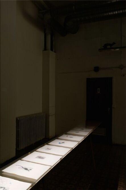 Petrit Halilaj, 'July 14th? (Installation view)', 2013