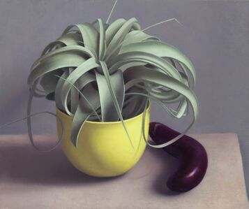 Amy Weiskopf, 'Airplant and Eggplant', 2016