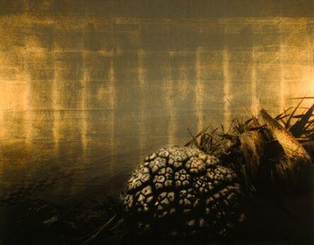 Aramasa Taku, 'HORIZON - Visible Transfiguration 2003 (Printed 2012)'