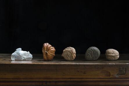 Stanley Fung, 'Seeds 種子                                                                                      ', 2017