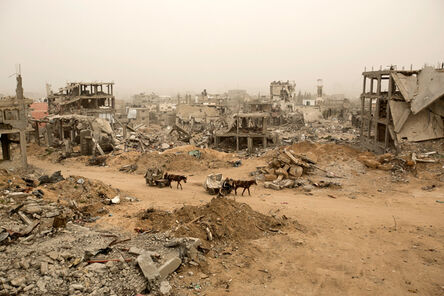 Agence France-Presse, 'Palestinians ride donkey carts during a sandstorm next to buildings destroyed during Operation Protective Edge (Tsuk Eitan), the 50-day war between Israel and Hamas-led militants, in al-Shejaiya neighborhood in Gaza City', 2015