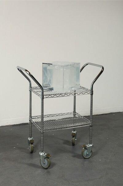 Sean Raspet, 'Arbitrary Embodiment (A02)', 2013