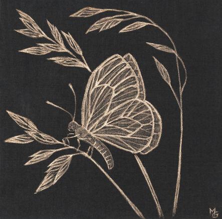 Margot Glass, 'Small Moth', 2020
