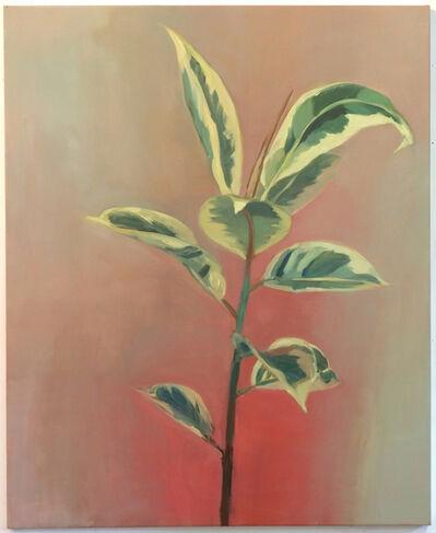 Janet Werner, 'Plant', 2014