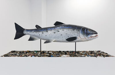 Mark Dion, 'The Salmon of Knowledge', 2015