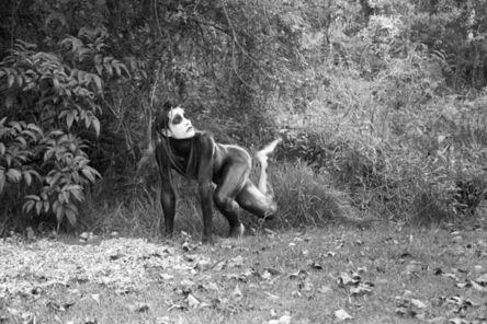 Carlos Motta (b. 1978), 'Untitled', 1998