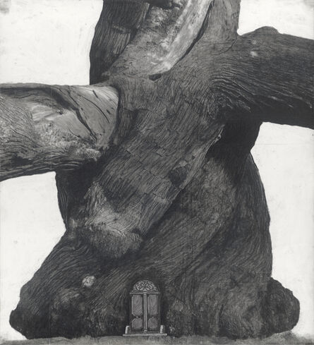 Patrick Van Caeckenbergh, 'Drawing of Old Trees during wintry days 2007-2014', 2007-2014