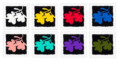 Donald Sultan, 'Lantern Flowers Suite', 2012