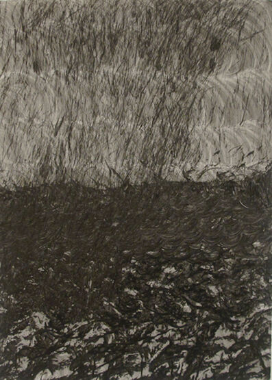 Trevor and Ryan Oakes, 'Untitled 14 (black)', 2011