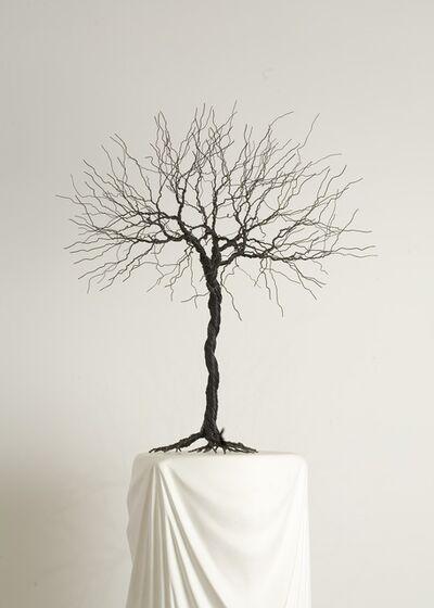 Pablo Avilla, 'Wire Tree', 2012