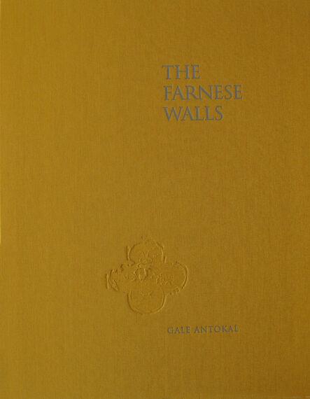 Gale Antokal, 'The Farnese Walls (Portfolio)', 2019