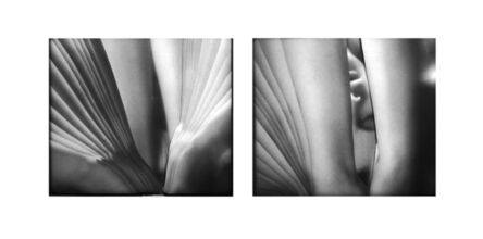 Karin Fisslthaler, 'Kristall (Double Ecstasy /A)', 2015