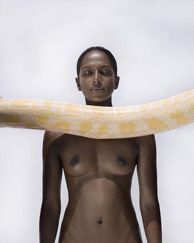 Sylvie Blum, 'The Python III', 2017