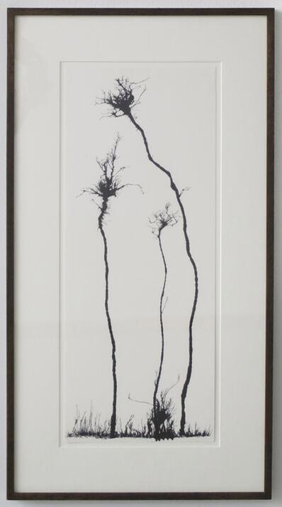 Mahmoud Hamadani, 'Untitled (Traces)', 2010