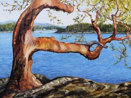 Terrill Welch, 'Arbutus Tree Reaching', 2018