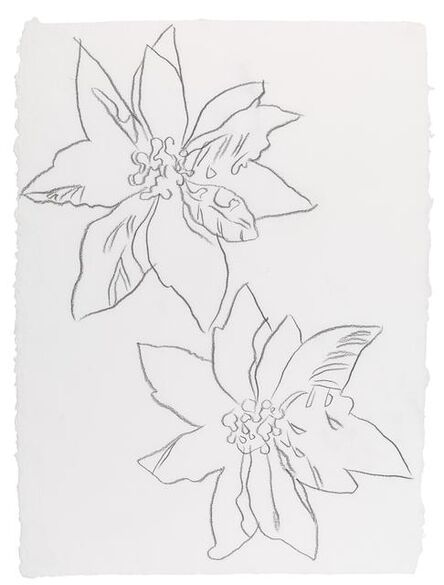 Andy Warhol, 'Poinsettias', n.d.