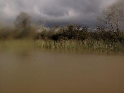 Silvana Muscio, 'Untitled (Delta serie)', 2013