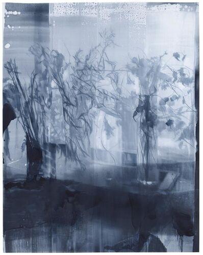 Julio Vaquero, 'Dibujo tras el velo', 2020