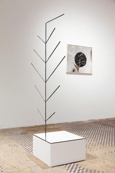 Davide Zucco, 'A Stranger', 2015