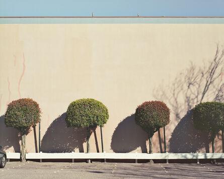 LM Chabot, 'San Francisco, CA 01', ca. 2010