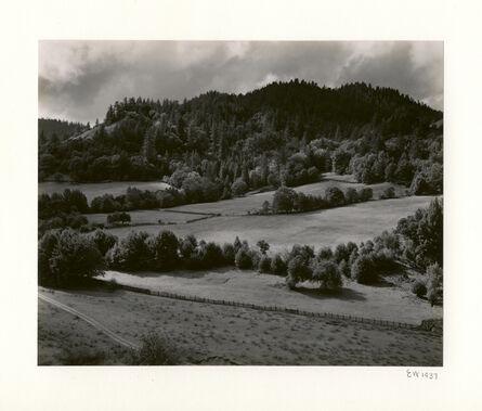 Edward Weston, 'Eel River', 1937-printed 1950 by Brett Weston