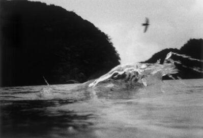 James Fee, 'Fly By, Palau', 2006
