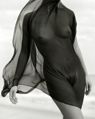 Herb Ritts, 'Female Torso with Veil', 1984