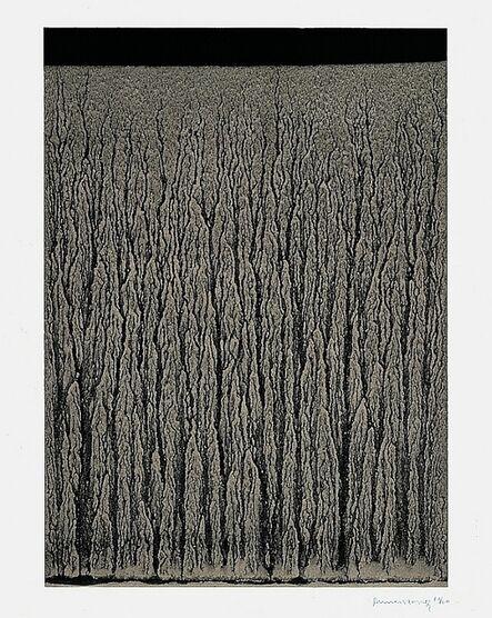 Richard Long, 'River Avon Mud Drawings (B)', 1998